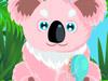 飼養無尾熊,Koala Care